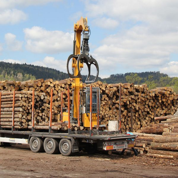 big pile of large logs & a crane