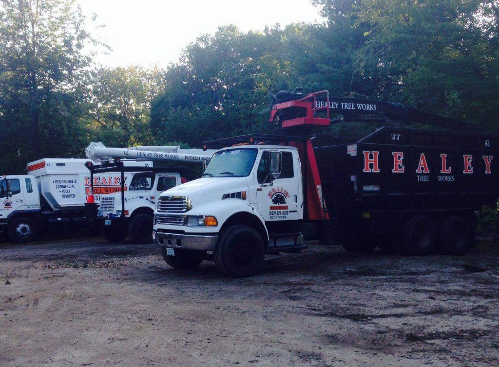 healey trucks