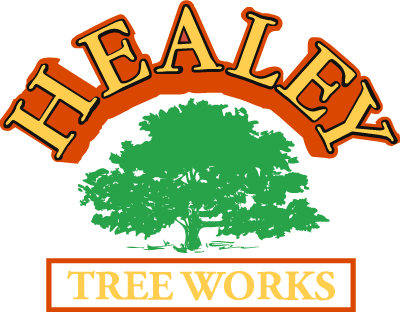 Healey Logo Small