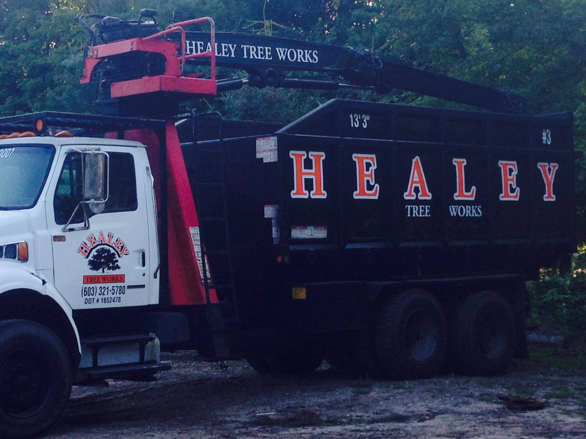 healey tree works truck